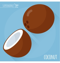 Coconut icon vector image