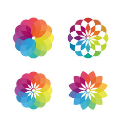 colorful flower concept design vector image