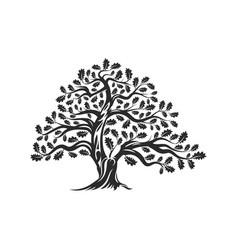 Huge and sacred oak tree silhouette logo badge vector