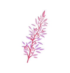 thorny shrub with pink leaves red berries vector image