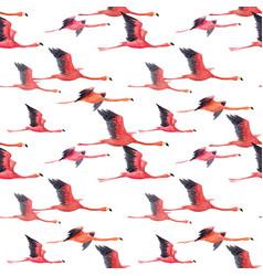 watercolor flamingo pattern vector image