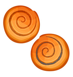 top view on crispy buns with poppy and jam vector image vector image