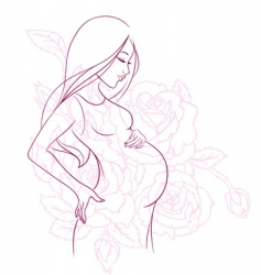 pregnant vector image vector image