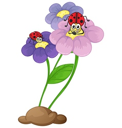 Flowers with ladybugs vector image vector image