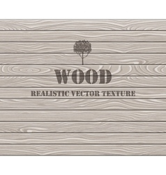Wooden plank texture background vector image vector image