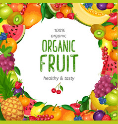 berries and fruits design vector image