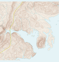 Coastal topographic map vector