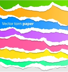 Collection of colorful torn paper vector image