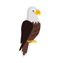 Eagle large bird prey cartoon isolated on white vector