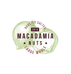 emblem with type design and hand drawn macadamia vector image