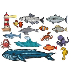 marine life vector image vector image