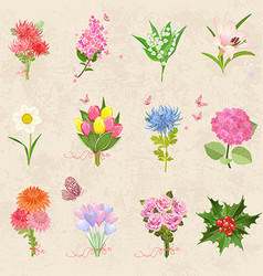 cozy collection with different bouquet of lovely vector image