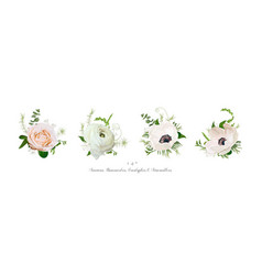 elements bouquets collection of pink white garden vector image vector image