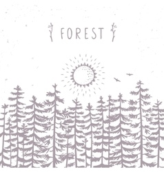 Forest beautiful silhouette vector