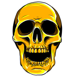 gold human skull on white background vector image