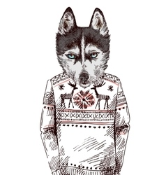 Husky in knitted sweater vector image