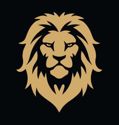 lion head gold golden logo template vector image