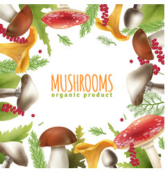 mushrooms frame realistic background poster vector image