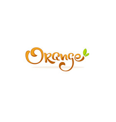 orange lettering composition for your citrus vector image