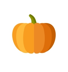 Pumpkin Isolated on White Flat Design Style vector