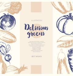 vegetables - color hand drawn composite banner vector image