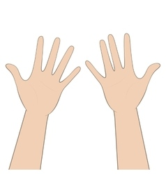 Women hands vector image