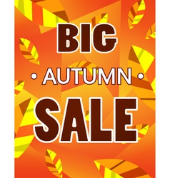 Advertisement about the autumn sale vector image vector image