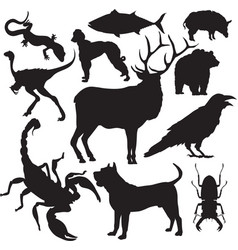 animals silhouettes vector image vector image