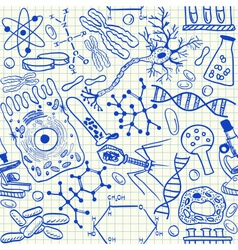 Biology doodles on school squared paper vector