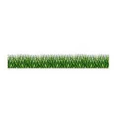 Fresh green grass field vector