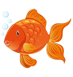 Goldfish with happy face vector image