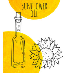 hand drawn sunflower bottle with yellow watercolor vector image