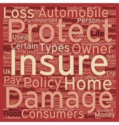 Why Is Insurance Important text background vector image