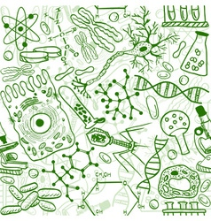 Biology drawings vector image vector image