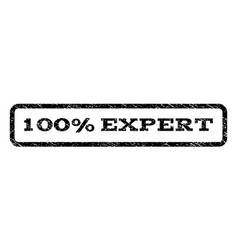 100 percent expert watermark stamp vector