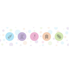 5 linear icons vector