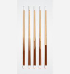 Billiard cue sticks on white background vector