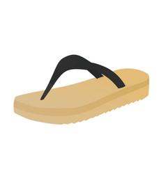 Brown flip flops vector