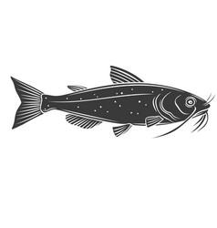catfish fish glyph icon vector image