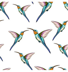Pattern exotic tropical humming bird vector