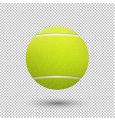 realistic flying tennis ball closeup vector image