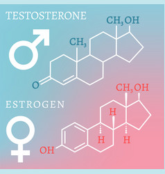 Testosterone and estrogen vector
