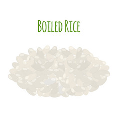 rice vegetarian food boiled rice seeds vector image vector image