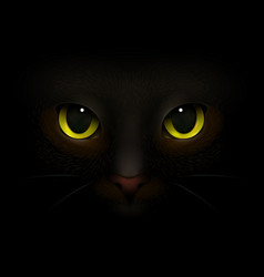 cat monster realistic composition vector image