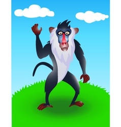 baboon in the wild vector image
