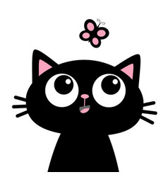 Cat head face looking at butterfly insect cute vector