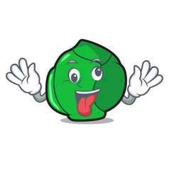 crazy brussels mascot cartoon style vector image