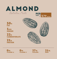 nutrition facts of almond hand draw sketch vector image
