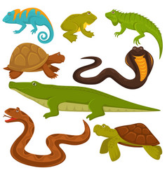 Reptiles and reptilian animals turtle crocodile vector