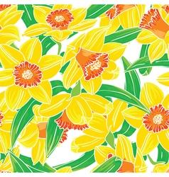Seamless pattern with narcissus flowers vector